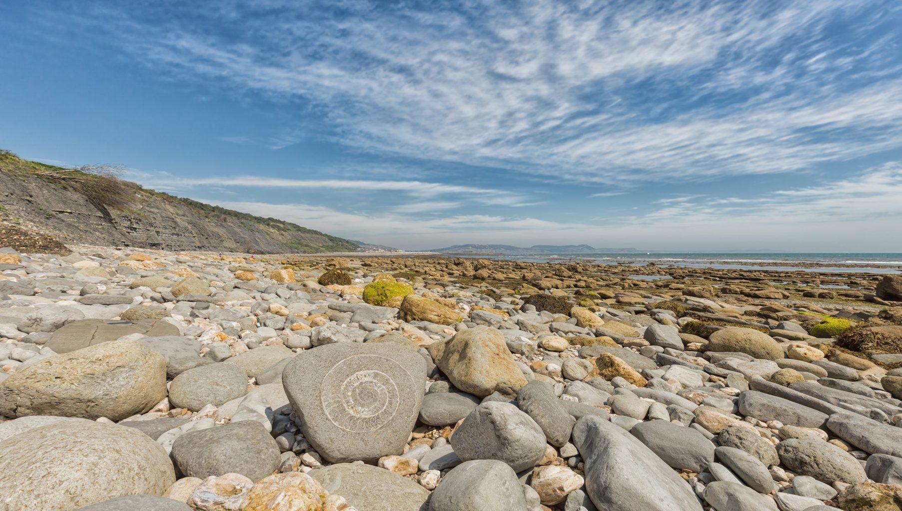 Lyme Regis to Charmouth Walk Dorset
