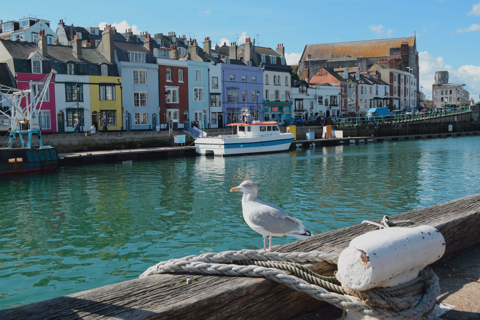 A Local's Guide to Weymouth Dorset