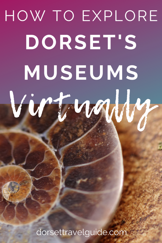 Dorset Museums You Can Explore Virtually