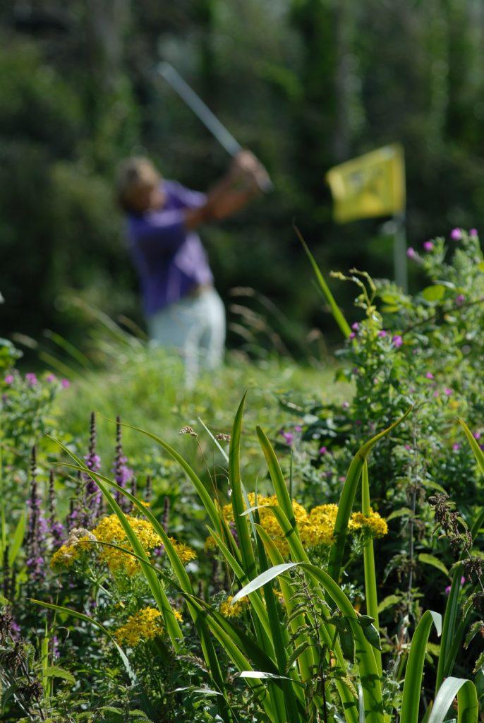Swanage Golf Games