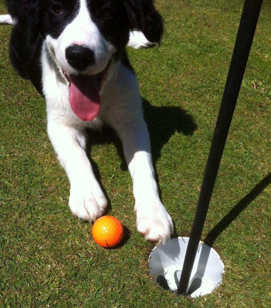 Golf Games Kirkwood Park
