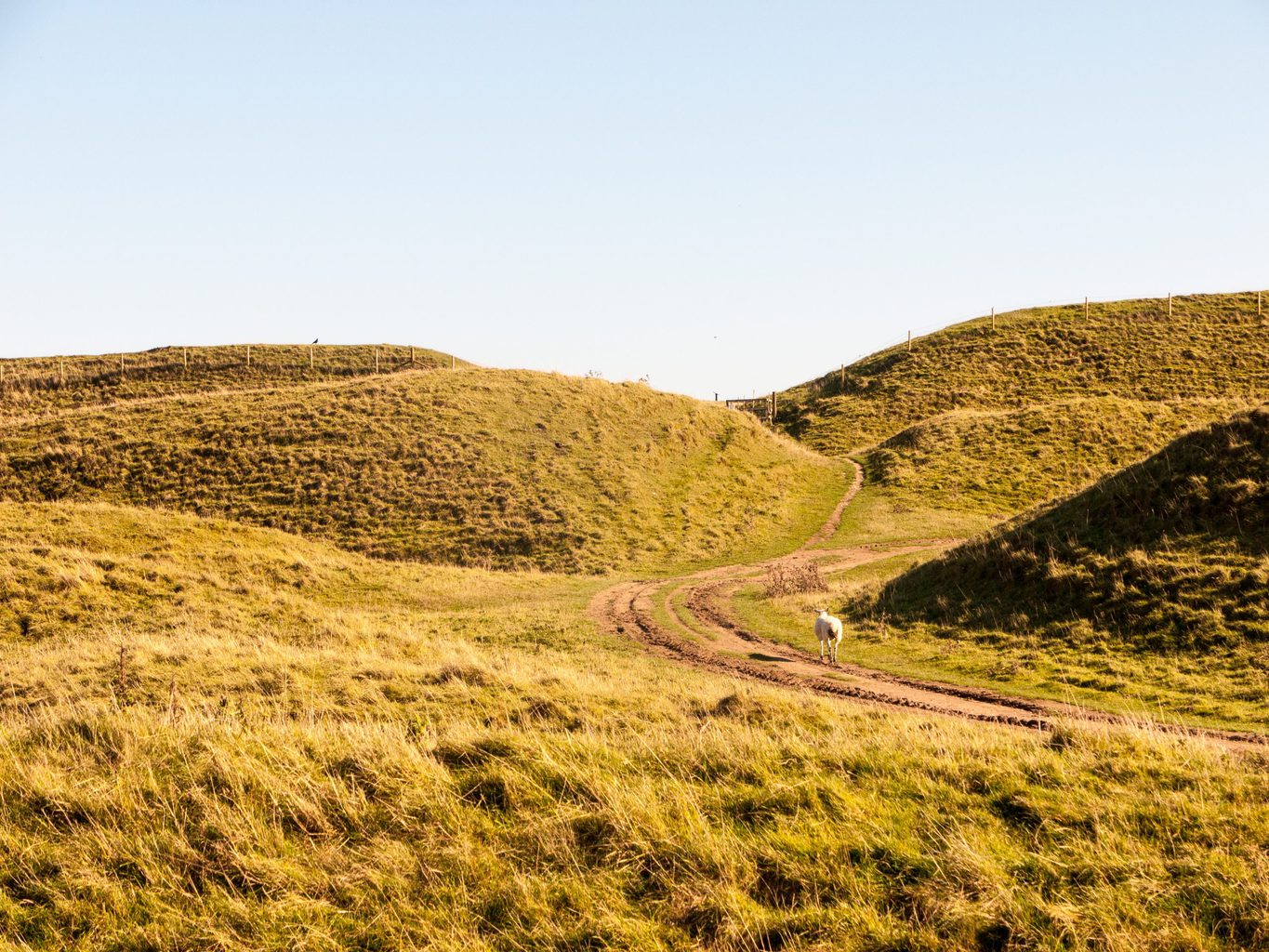 Maiden Castle is one of the best things to do in Dorchester Dorset