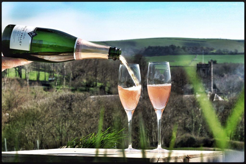 Bride Valley Vineyard Dorset