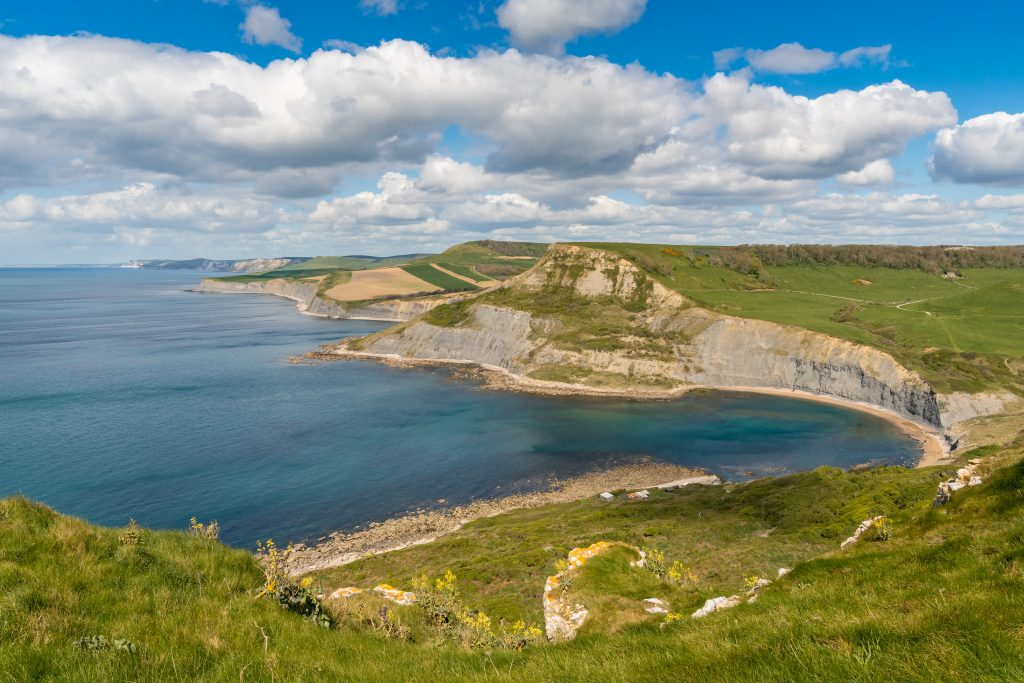 Dorset Coast Walks - Hounstout to Chapman's Pool