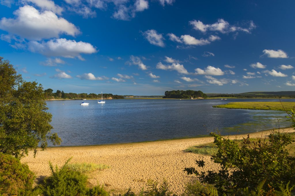 Shipstal Beach at Arne in Poole