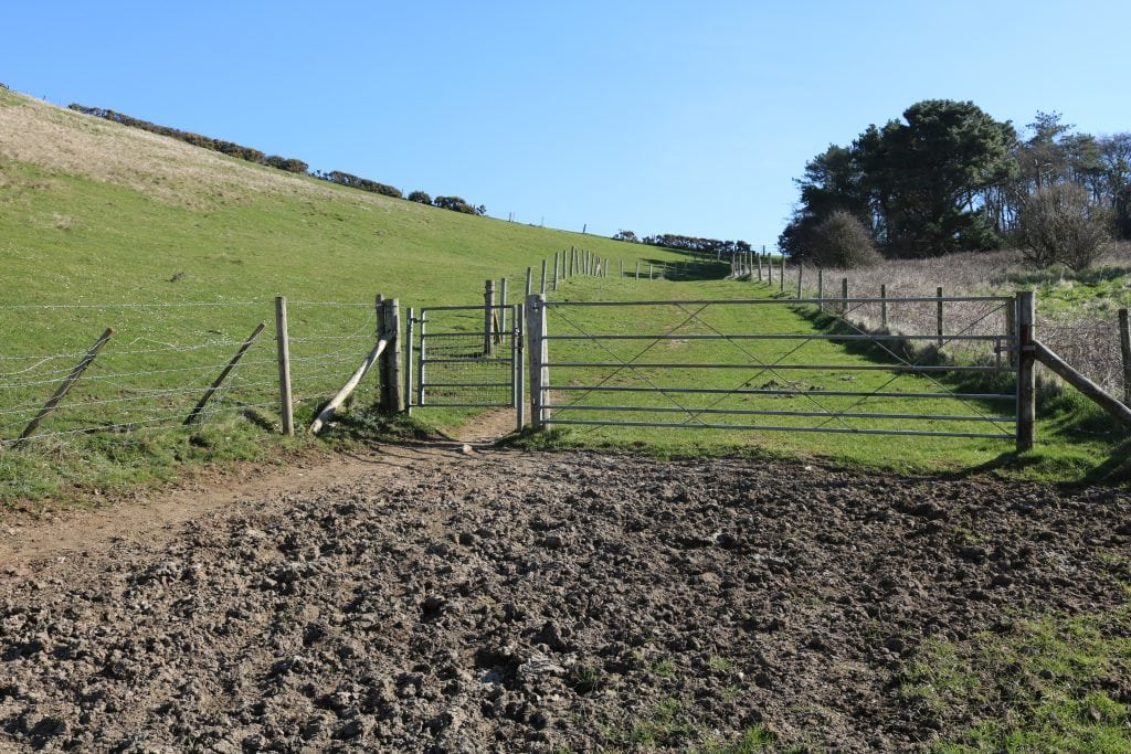 Walking through Scratchy Bottom Dorset