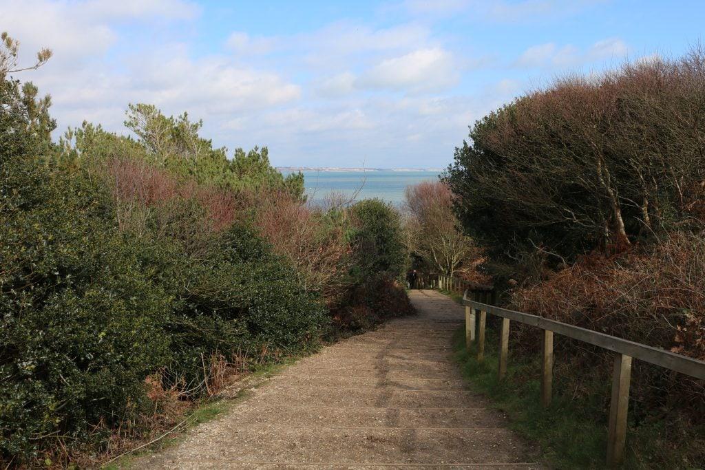 Steps down to the beach on the Hengistbury Head circular walk