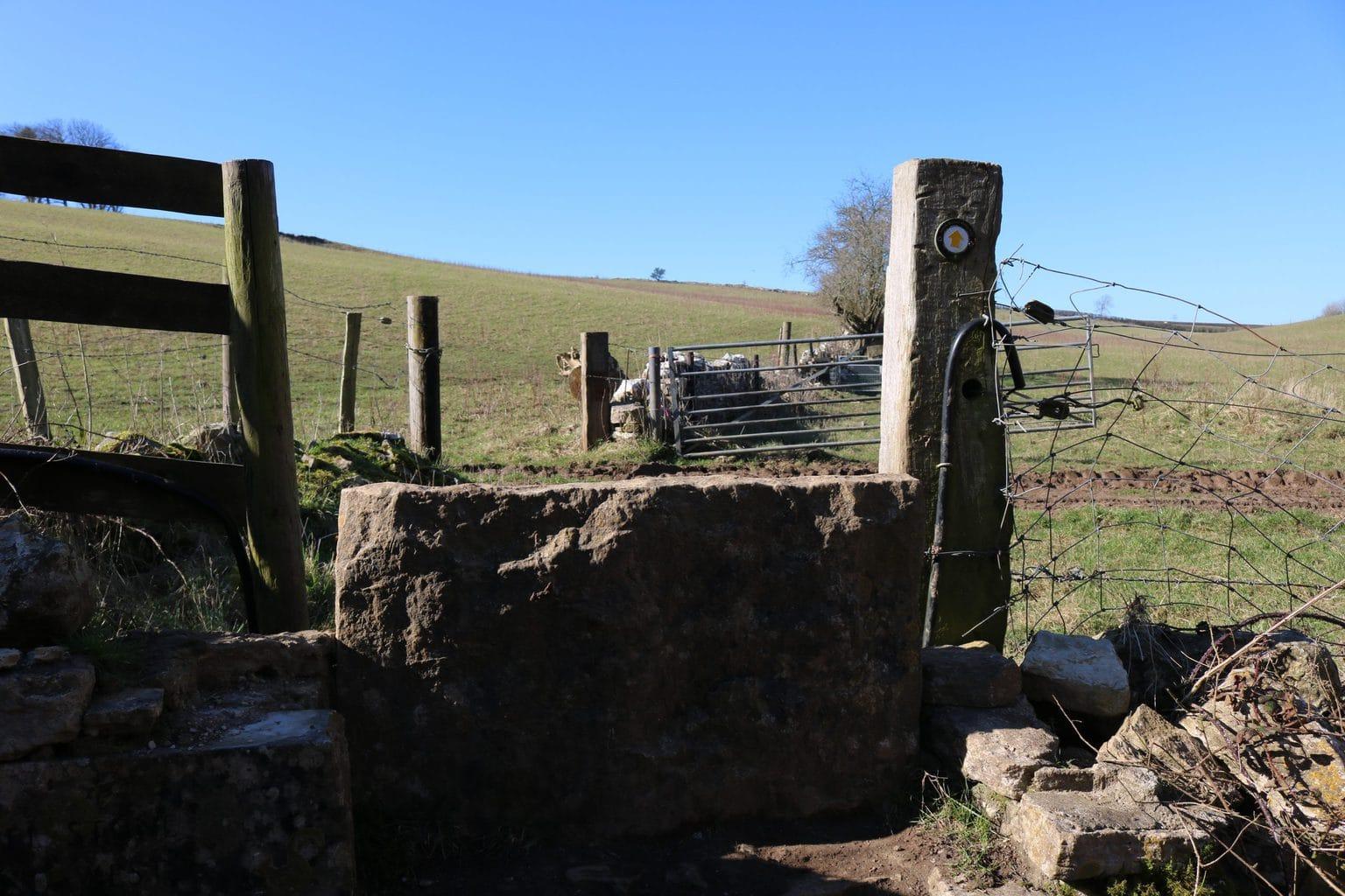South Dorset Ridgeway Waymarker on a stone stile