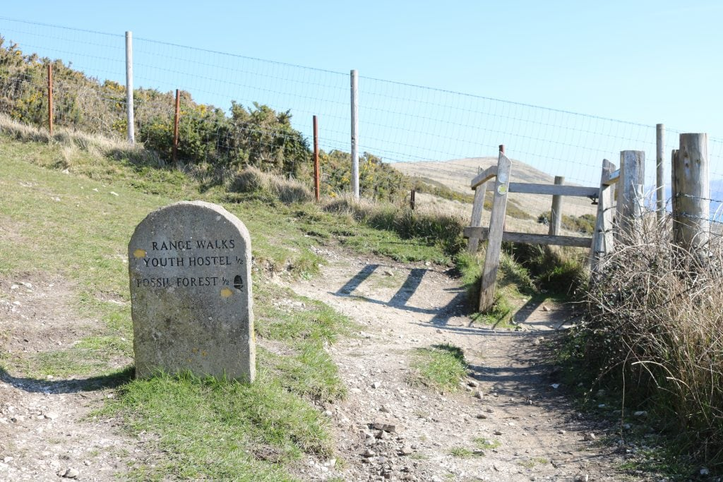 Stone signpost for the Fossil Forest at Lulworth