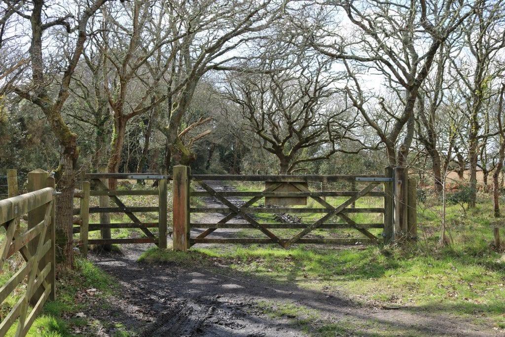 Wooden gate in woodlands near Mudeford Dorset