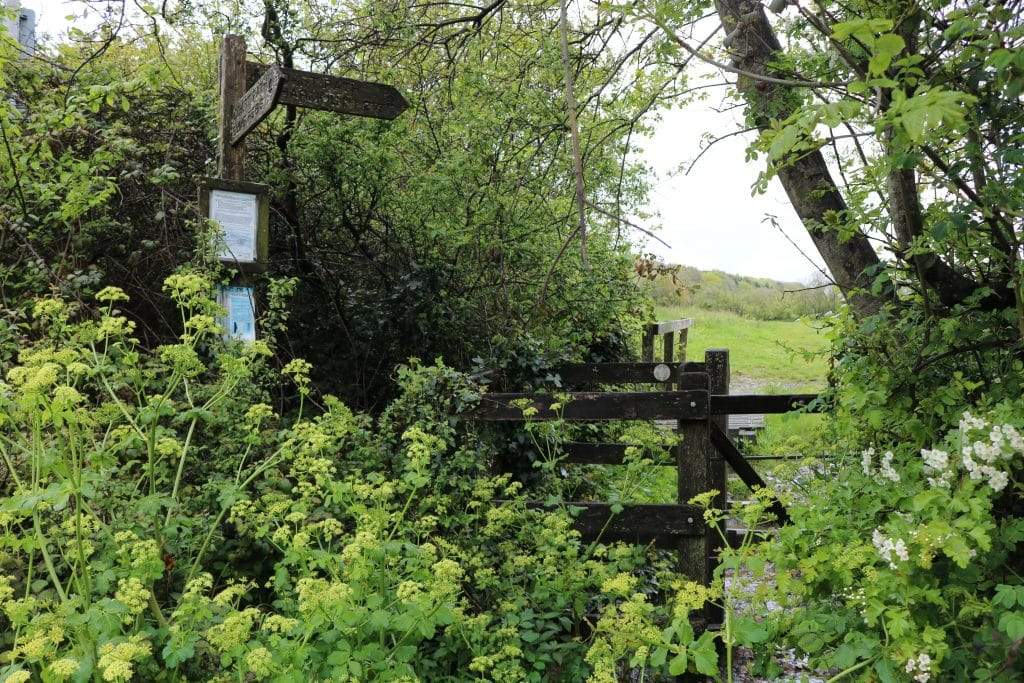 South West Coast Path signpost and wooden kissing gate in green countryside