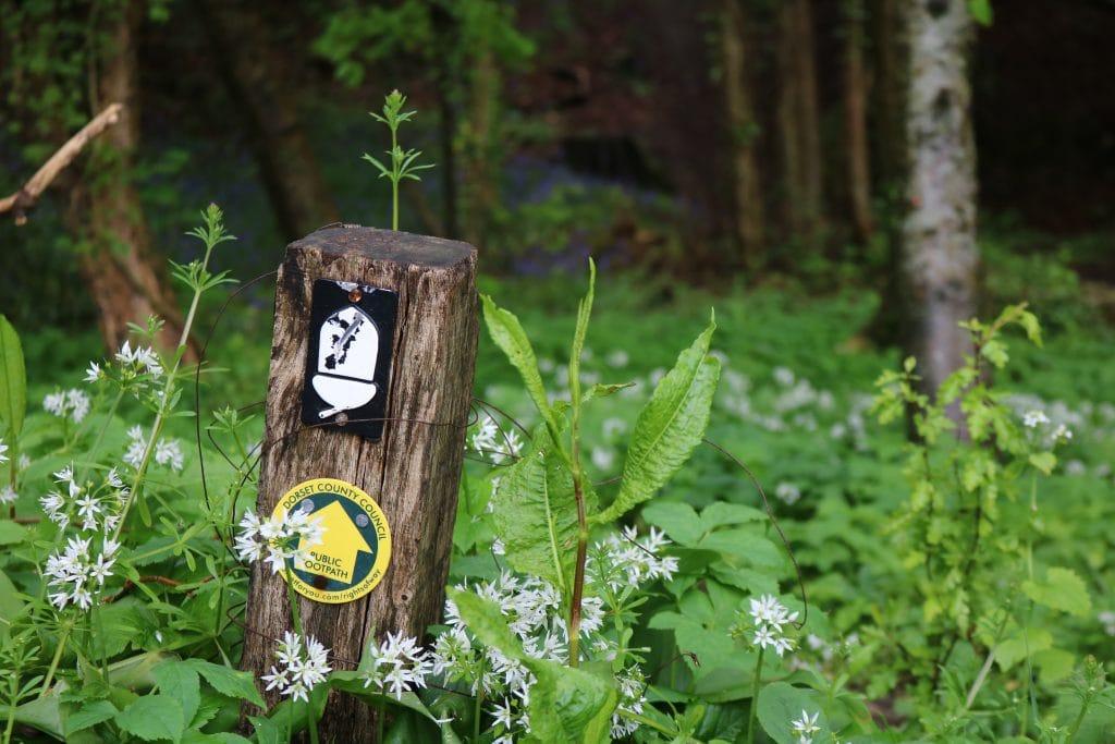 Yellow Waymarker on Lyme Regis to Charmouth walk