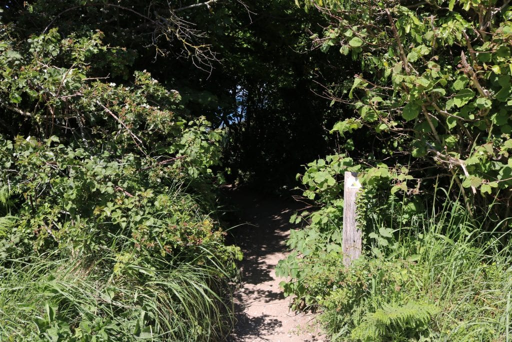 Path on the Old Harry Rocks Walk