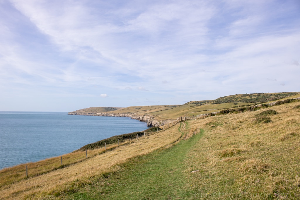 Cliff walk from Durlston to Dancing Ledge in Swanage Dorset
